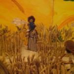 in den Kornfeldern